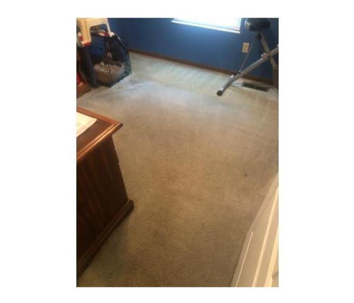 light colored bedroom carpet, no stains, clean and freshly vacuumed