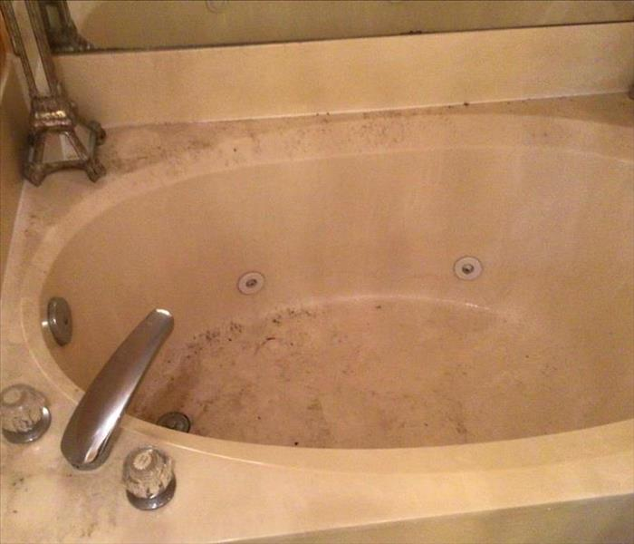visible mold covering bathtub