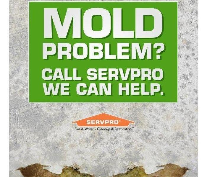 "text that says ""Mold Problem? Call SERVPRO we can help."""