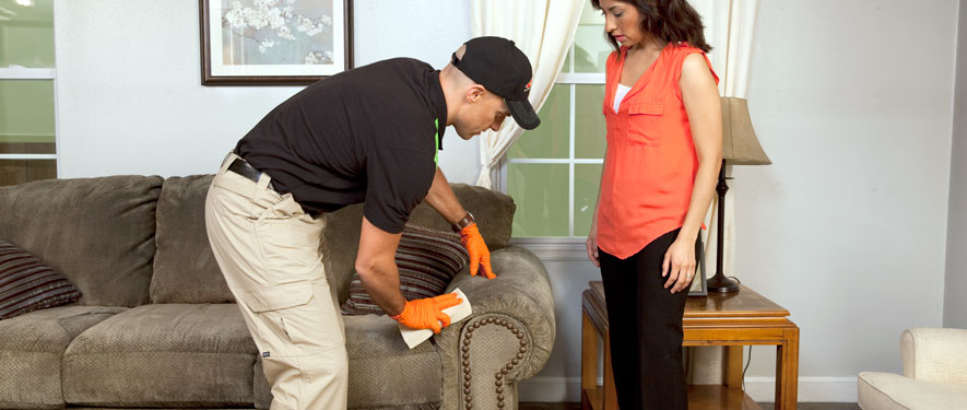 Arnold, MO carpet upholstery cleaning